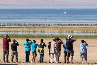 Salton Sea National Wildlife Refuge Migratory Bird Day | by USFWS Pacific Southwest Region