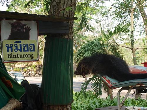 Khao kheo Zoo