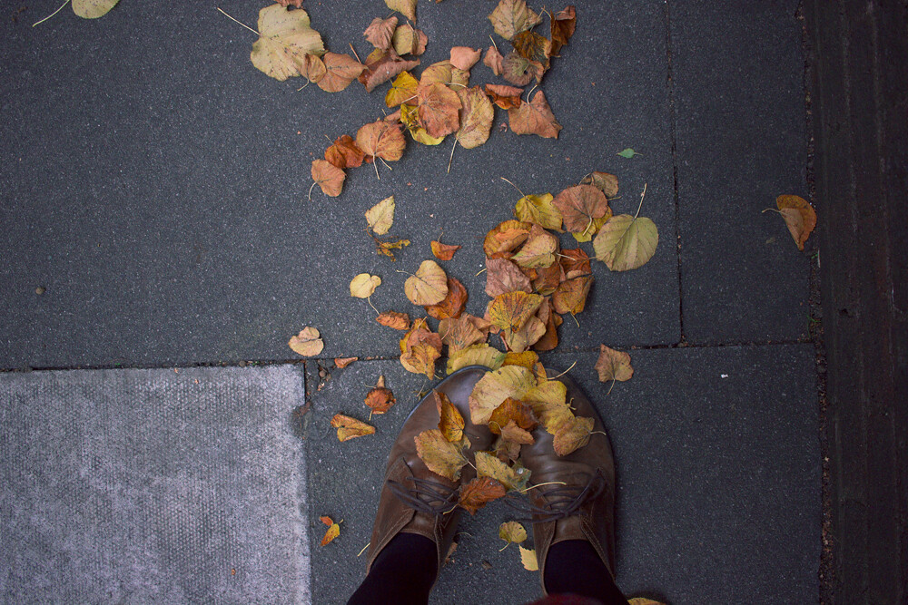 orange and yellow leaves covering brown boots, leaves covering shoes, leaves on shoes, autumn leaves, autumn leaves on boots