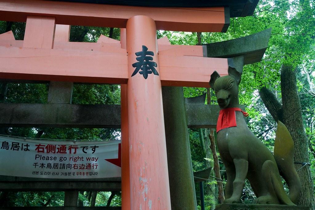Fushimi Inari_04