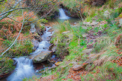 Parque natural de Gorbeia #DePaseoConLarri #Flickr      -2047