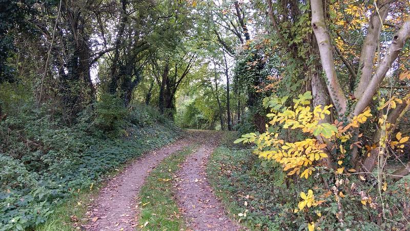 Selztal zwischen Ingelheim und Groß-Winternheim