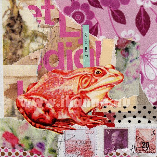 Frog Collage by iHanna: In Your Palm - art by iHanna aka Hanna Andersson, Sweden