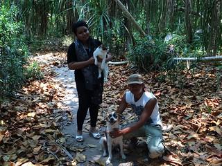 Thousand Islands Dog Friendly