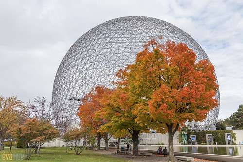 biosphere fall ile notre dame | by Eva Blue
