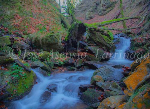 Parque Natural de Gorbeia   #DePaseoConLarri #Flickr      -2778