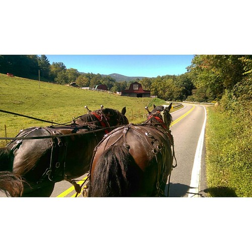 percherons are incredible. aboard the chuck wagon #ruralacademytheater | by l*ght//m_tion