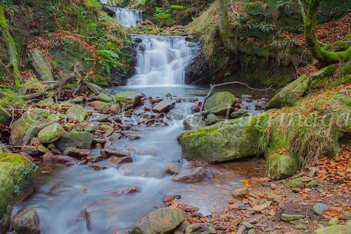 Parque natural de Gorbeia #DePaseoConLarri #Flickr      -2002