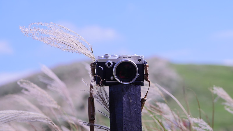 Olympus PEN-F|75mm f/1.8 ED