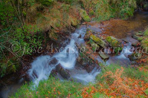 Parque natural de Gorbeia #DePaseoConLarri #Flickr      -2050