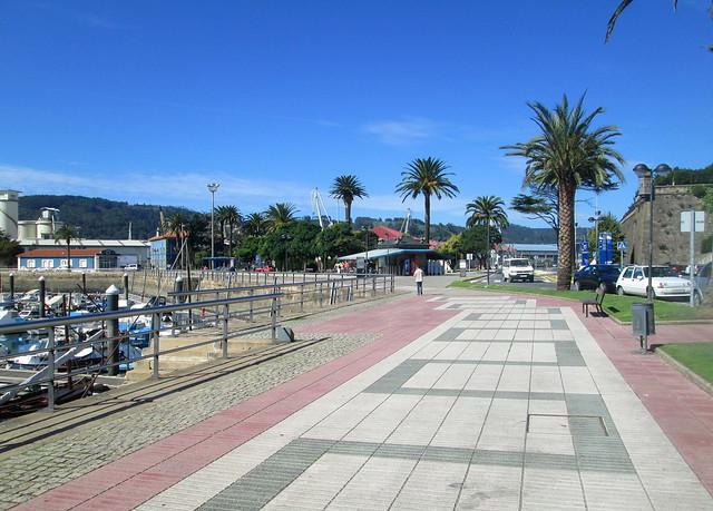 atrees at port
