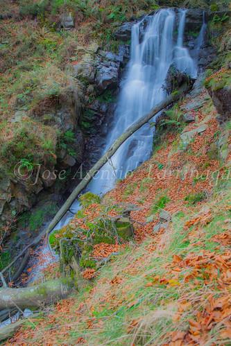 Parque natural de Gorbeia #DePaseoConLarri #Flickr      -2032