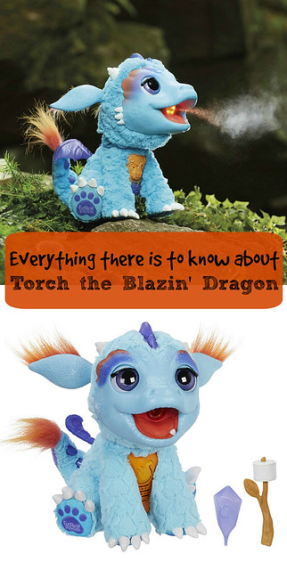 Everything there is to know about Torch the Blazin' Dragon