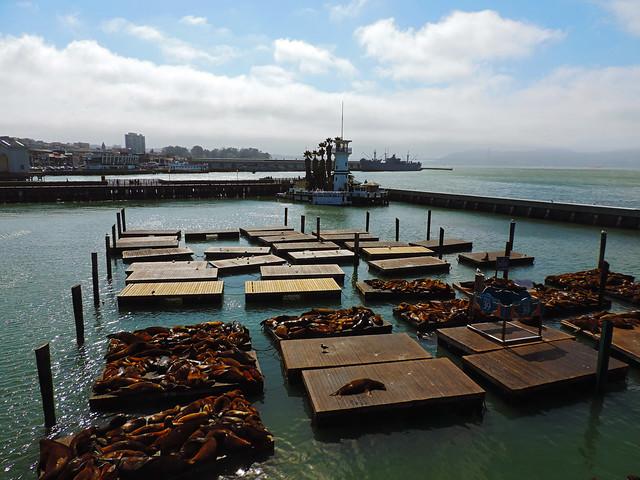 Pier 39, San Francisco, CA, USA
