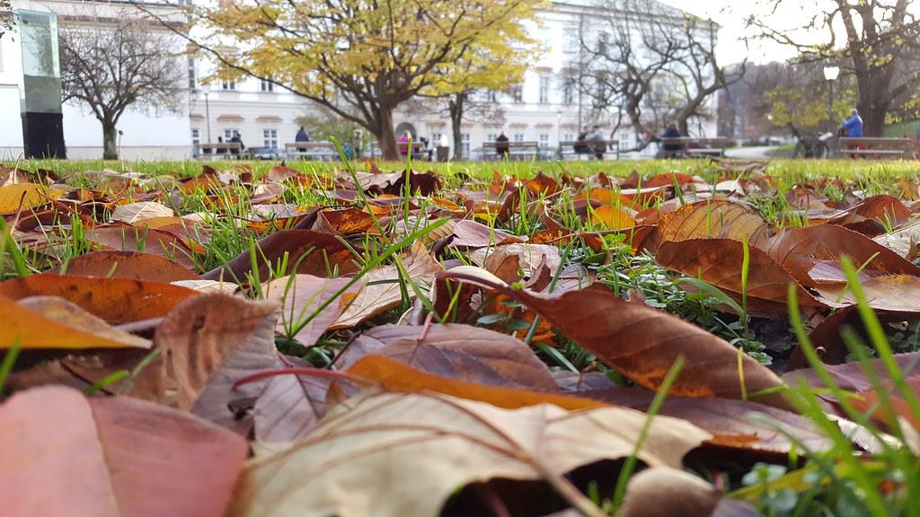 Herbstwarme Naturfarben Salzburg Visitsalzburg Visitaus Flickr
