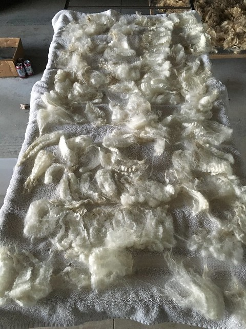 Washed fleece