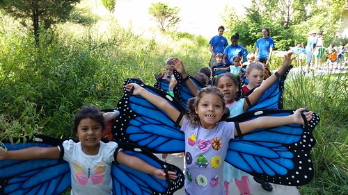 Robinson Nature Center Summer Camps 2016