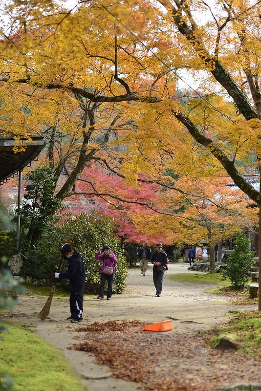 京都 西明寺 紅葉