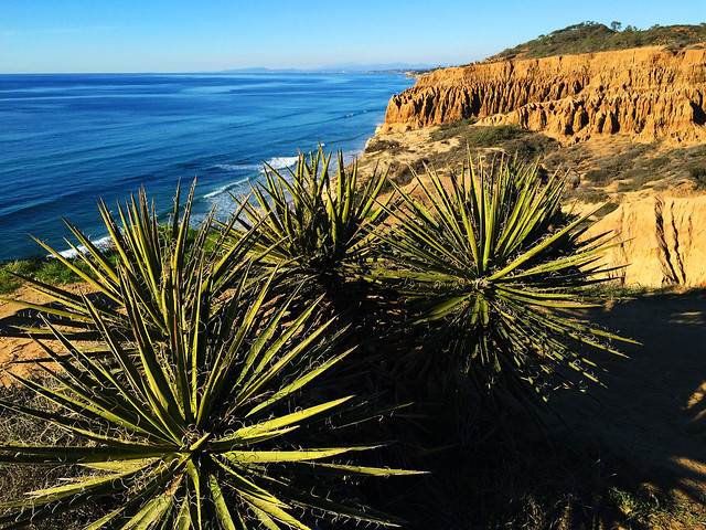 Best Autumn Hikes In California: Torrey Pines State Natural Reserve, California, USA