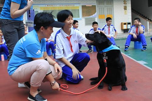 Love Animal Model School  IMG_5056-1