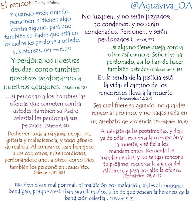 10 citas bíblicas sobre el Rencor