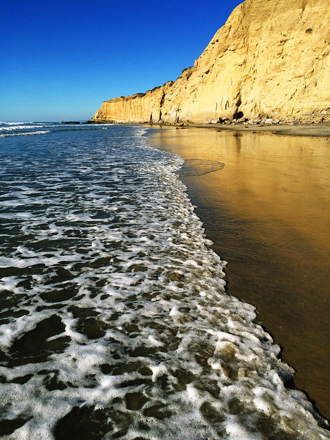Best Autumn Hikes In California: Torrey Pines State Beach, California, USA