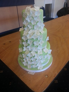 Pastel Green Hydrangea wedding cake | by platypus1974