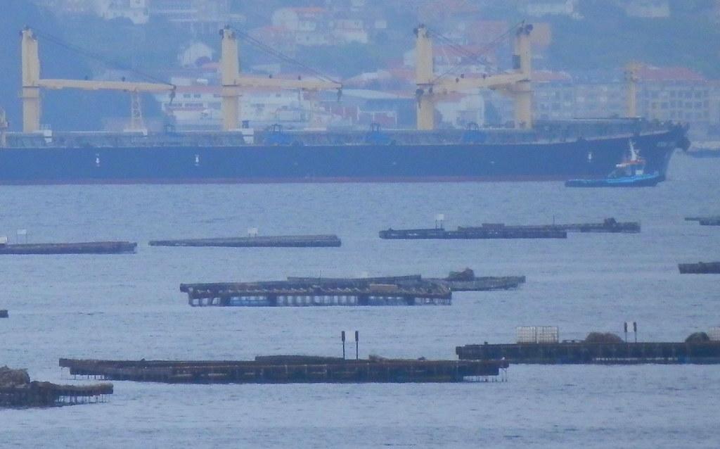 Bateas y barcos