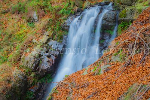 Parque natural de Gorbeia #DePaseoConLarri #Flickr      -2043