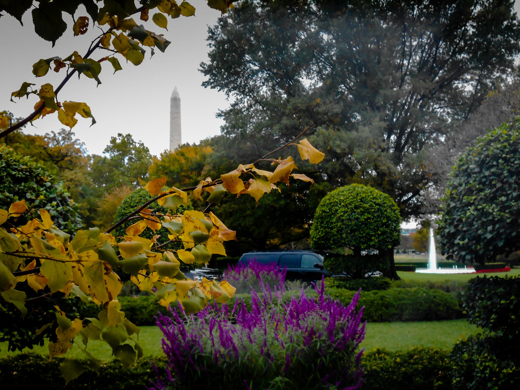 The White House South Lawn Garden Washington Dc The Whit Flickr