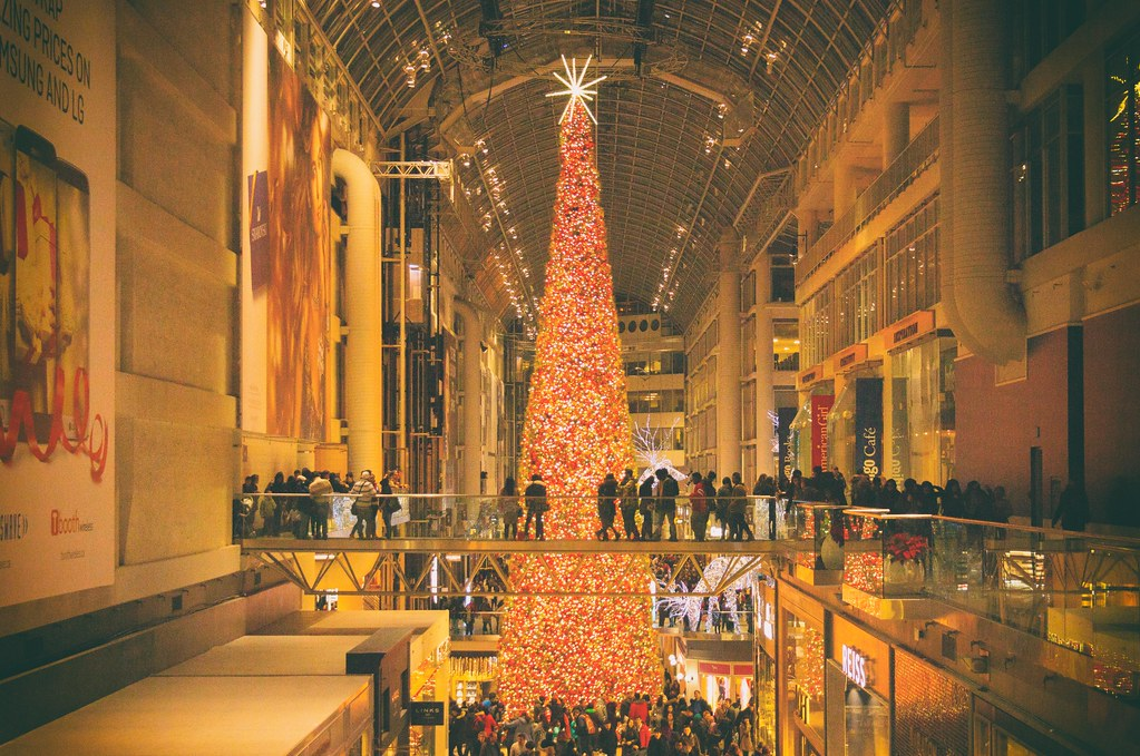 canadas biggest christmas tree 100 feet tall by a great capture - Biggest Christmas Tree