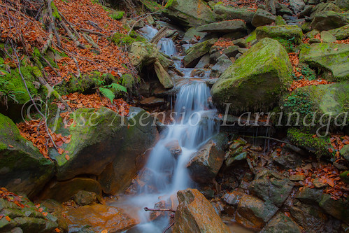 Parque natural de Gorbeia #DePaseoConLarri #Flickr      -2067