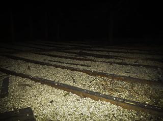 Asbestos-Contaminated Vermiculite Loose-Fill Attic Insulation   by Asbestorama ... & Asbestos-Contaminated Vermiculite Loose-Fill Attic Insulatu2026   Flickr