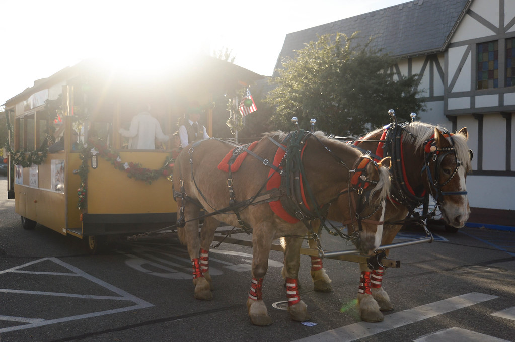 horse-pulled trolley