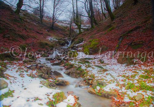 Parque Natural de #Gorbeia #DePaseoConLarri #Flickr      -1925