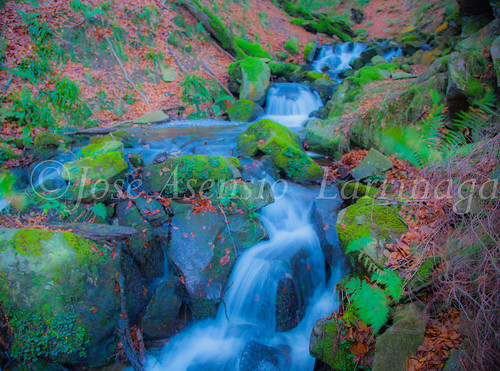 Parque Natural de Gorbeia   #DePaseoConLarri #Flickr      -2754