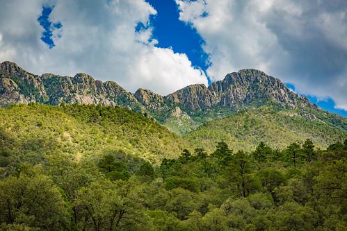 Mt. Wrightson and Madera Canyon