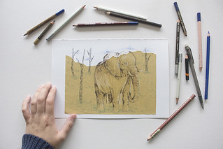 Time Lapse Drawing #3 · Elephant | by the blue rabbit house