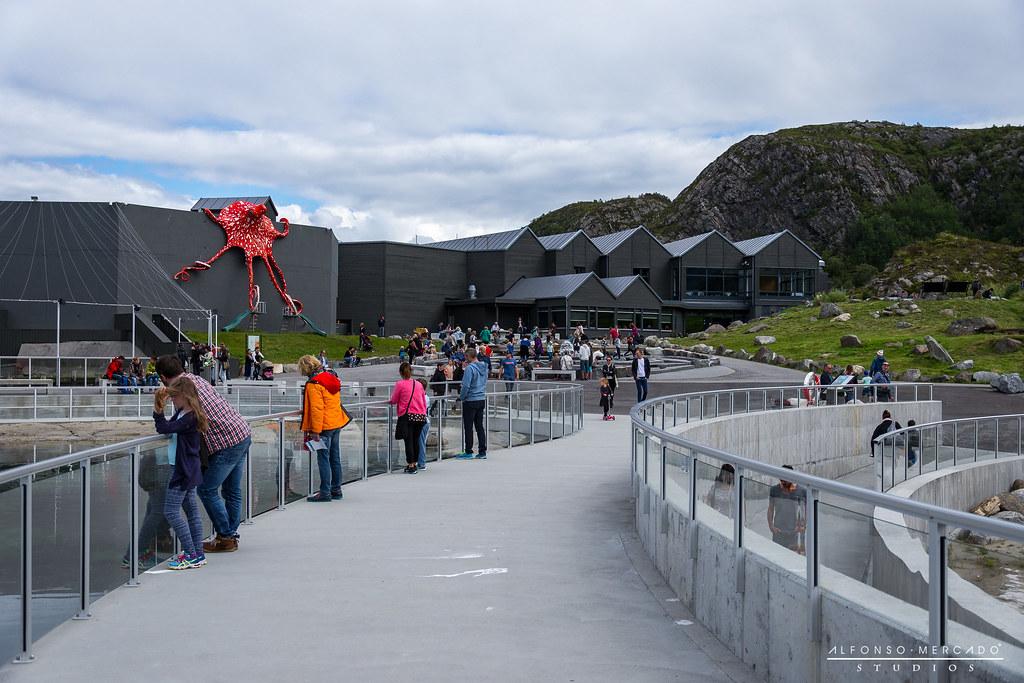Atlantic Sea-Park Ålesund aquarium (Atlanterhavsparken Akvarium)