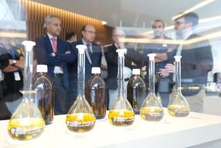 Ventana a la Ciencia: Automatización avanzada del proceso de elaboración de aceite de oliva virgen