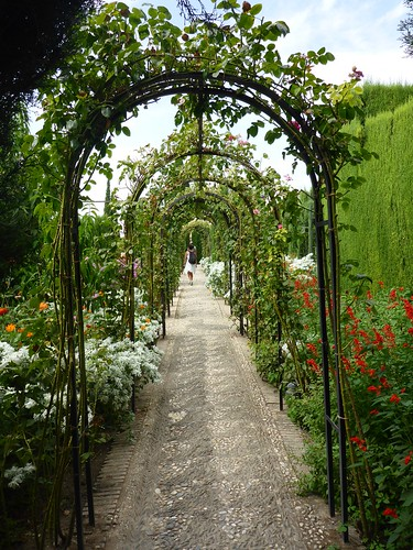 Archways through the garden