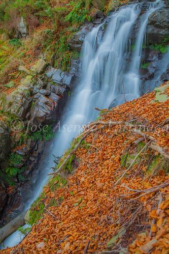 Parque natural de Gorbeia #DePaseoConLarri #Flickr      -2040