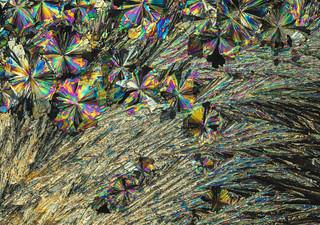 Crystals of citric acid - D8E_7727