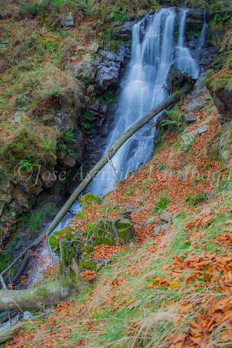Parque natural de Gorbeia #DePaseoConLarri #Flickr      -2033
