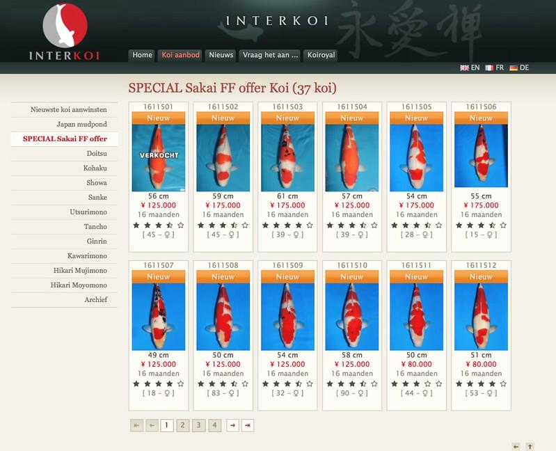 SFF Event Interkoi screenshot site