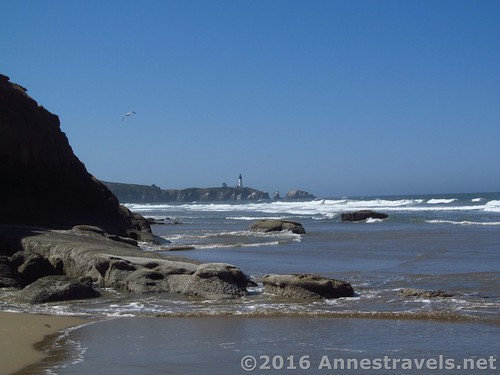 I think an Epic Hiking Fail is when the tide is coming up so you can't go around the point that will take you back to your vehicle… south of Beverly Beach, Oregon