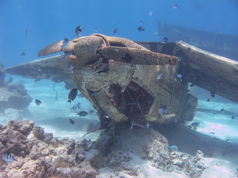 Not our plane Tahiti French Polynesia scuba diving sukellus airplane wreck