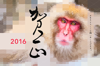 2016-monkey | by itoyohja