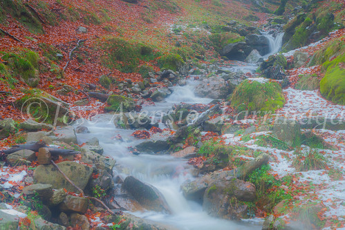 Parque Natural de #Gorbeia #DePaseoConLarri #Flickr      -1994