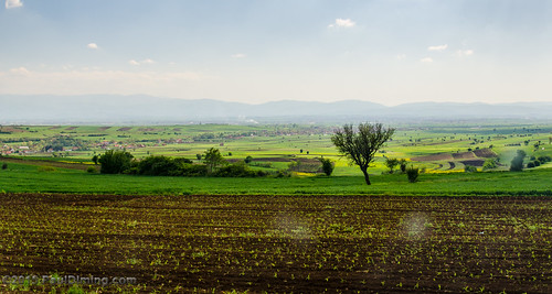 Farmland Near Janjevo, Kosovo | by Paul Diming